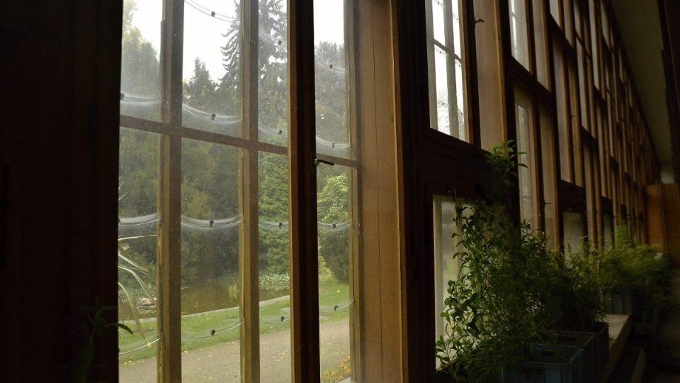 Okna se šupinami