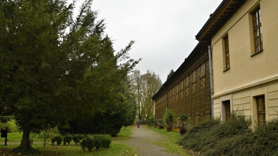Palmový skleník v zahradě zámku
