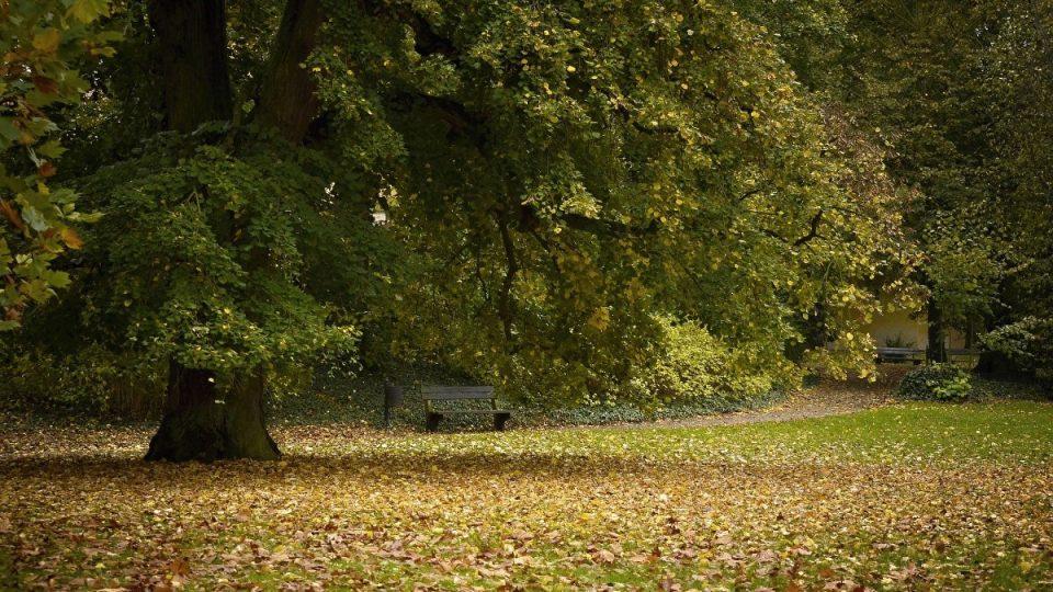 Park opočenského zámku láká k navštěvě v každé roční době