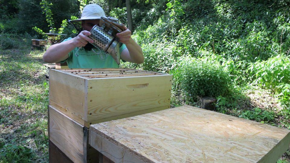 Jak se stáčí med