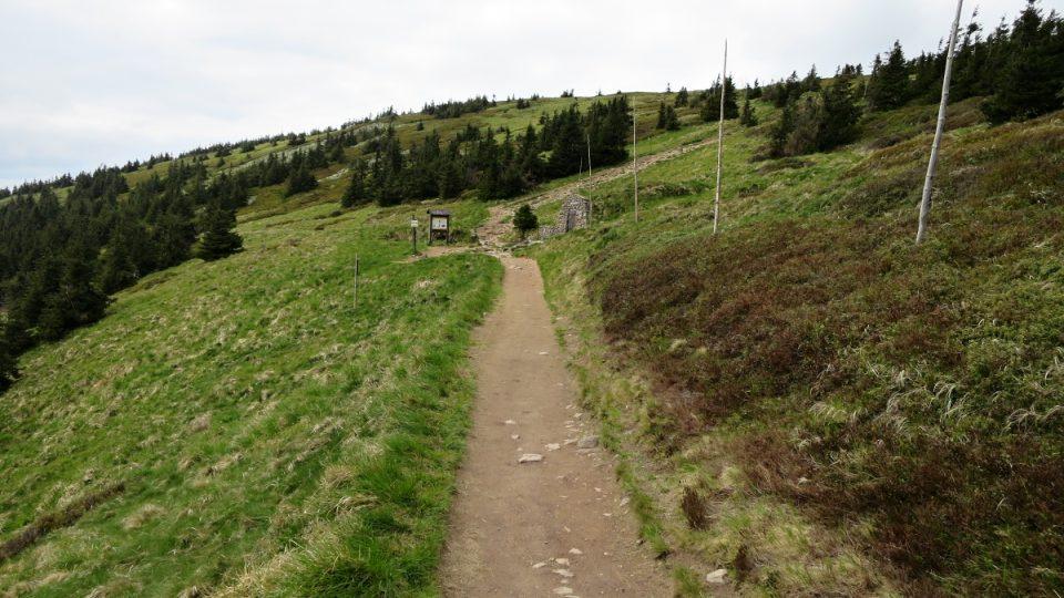 Cesta od slona k pramenu Moravy