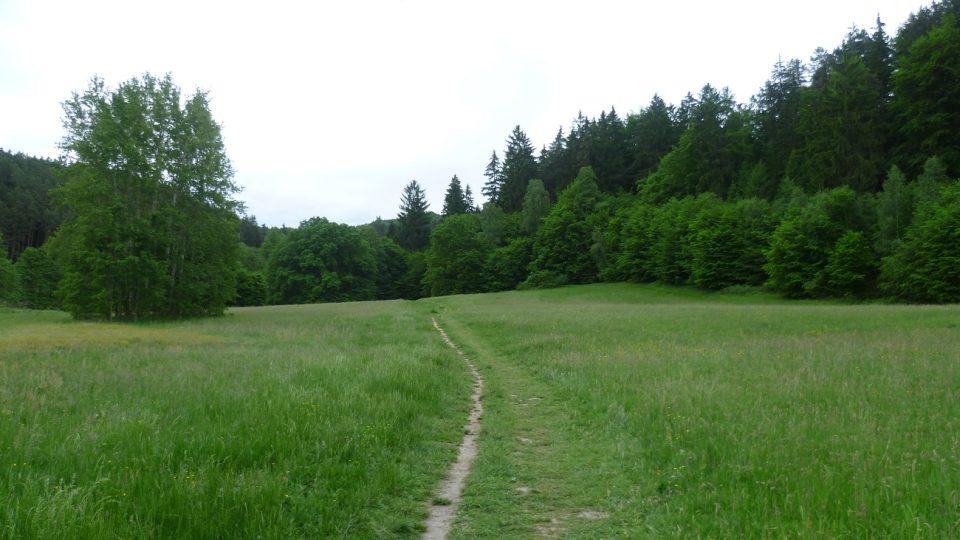 Cesta z kempu do rezervace
