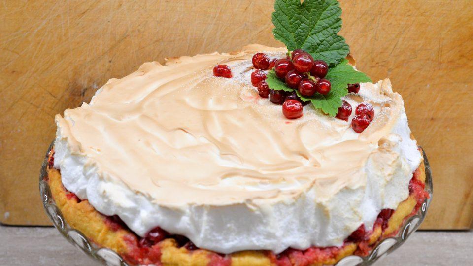 Zámecký rybízový koláč Barbory Hubertové
