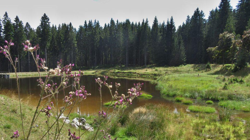 Černý rybník sloužil horníkům