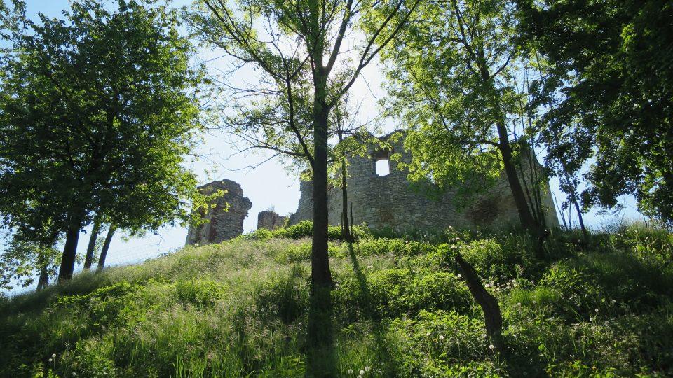 Pohled na zříceninu hradu z lávky mířící do parku Hamzovy léčebny