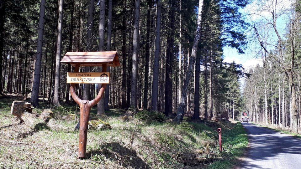 Naučná stezka vás povede po této pohodlné lesní cestě. Ideální pro kola i rodiče s kočárky