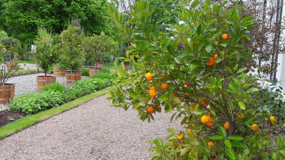 Zámecká oranžerie v Raduni